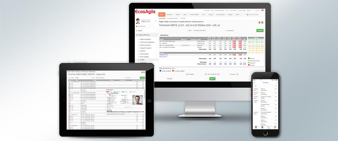 software cloud e web per la gestione di progetti, timesheet e servizi verso clienti.